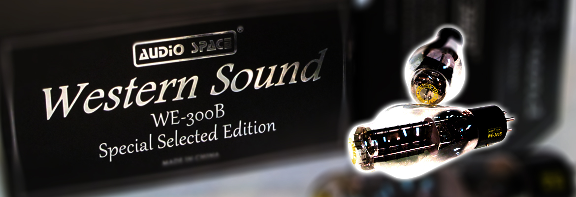 WE-300B Special Selected Edition