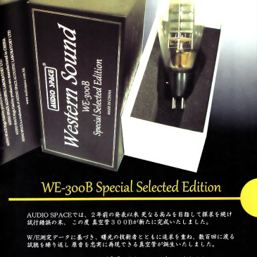 MJ Audio Technology – WE-300B Special Selected Edition